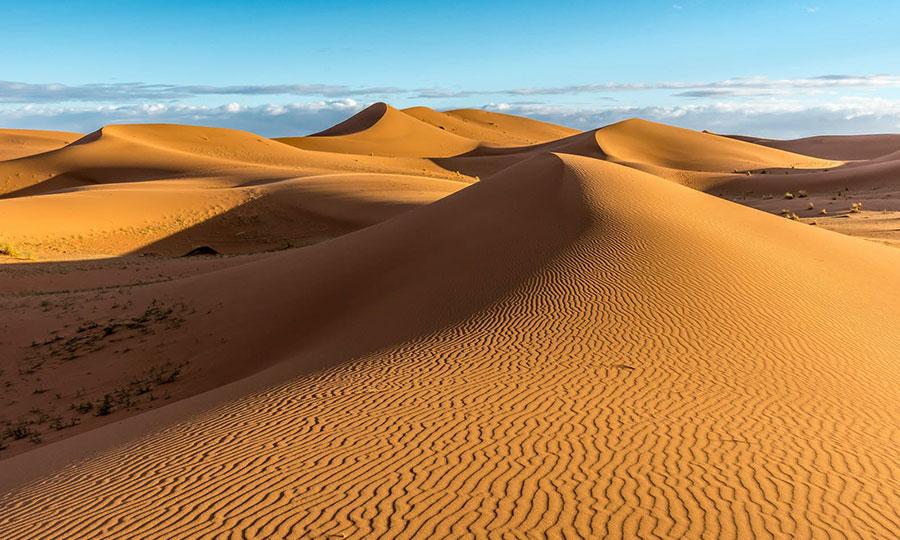 Sahara Dessert 3